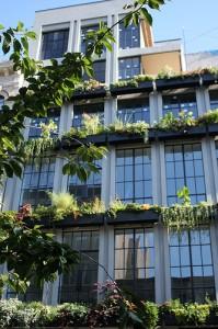 Вертикальное озеленение фасадов