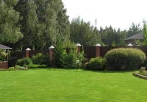 Готовый газон, технология озеленения